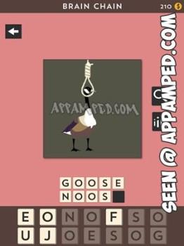 brain chain set 4 level 07 answer