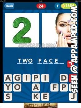 picsizzle level 24 answer