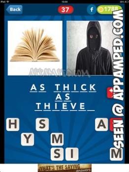 picsizzle level 37 answer