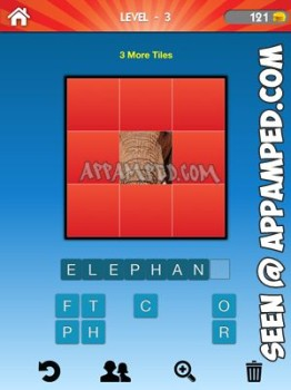 what animal level 03 answer
