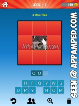 what animal level 05 answer