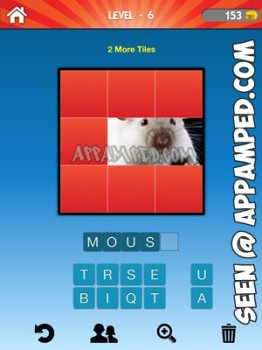 what animal level 06 answer
