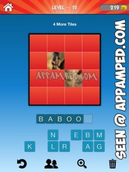 what animal level 12 answer