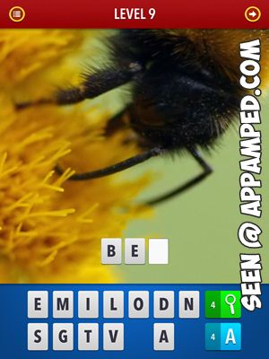 zoom mgnified pics answers level 09
