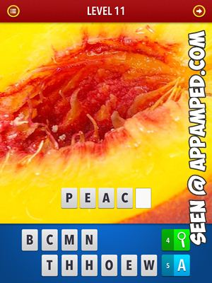 zoom mgnified pics answers level 11