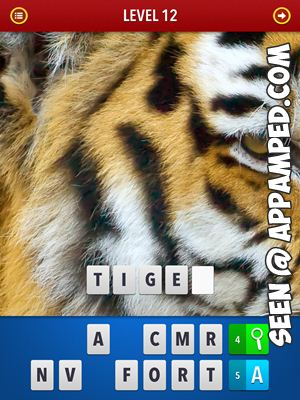 zoom mgnified pics answers level 12